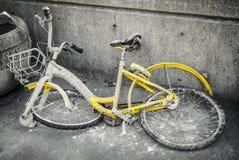Bicicleta dividida fotografia de stock