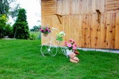 Bicicleta do fio Imagens de Stock