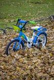 bicicleta do ` s das crianças no parque imagens de stock royalty free