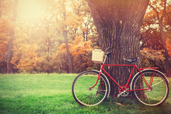 Bicicleta do vintage Imagem de Stock Royalty Free