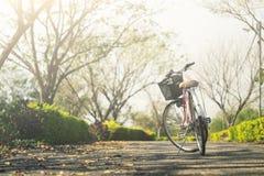 Bicicleta do vintage com campo de grama do verão Imagens de Stock