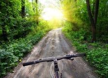 Bicicleta dos esportes do leme no fundo da estrada de floresta ao sol brilhante fotografia de stock