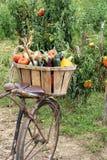 Bicicleta dos vegetais Imagens de Stock Royalty Free
