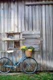 Bicicleta e vegetais foto de stock