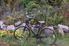 Bicicleta em um jardim Foto de Stock Royalty Free