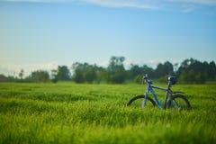 Bicicleta en campo de hierba por la mañana Fotos de archivo