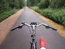 Bicicleta en carril del bosque Imagen de archivo libre de regalías