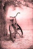 Bicicleta en el campo Fotos de archivo