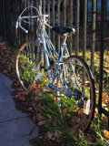 Bicicleta en el Sun Imagen de archivo