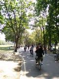 Bicicleta en parque Foto de archivo libre de regalías