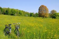 Bicicleta en un prado Foto de archivo libre de regalías