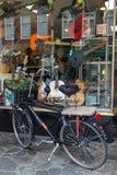 Bicicleta estacionada na frente da janela da loja com guitarra Imagem de Stock