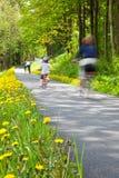 Bicicleta feliz del montar a caballo de la familia en el parque Fotografía de archivo