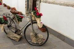A bicicleta floresceu Imagem de Stock Royalty Free
