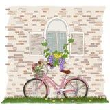 Bicicleta, janela, e planta de videira cor-de-rosa Imagem de Stock
