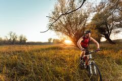 Bicicleta masculina nova apta da equitação do motociclista da montanha sobre um prado com grama alta fotos de stock