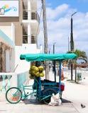 Bicicleta mexicana da carga usada como o veículo do vendedor ambulante em Progresso Iucatão cerca do julho de 2017 imagens de stock royalty free