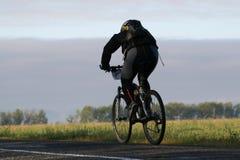 Bicicleta na estrada   Fotos de Stock Royalty Free