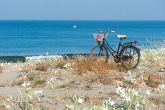 Bicicleta na praia Imagem de Stock
