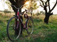 Bicicleta nave retro Por do sol no campo Imagens de Stock