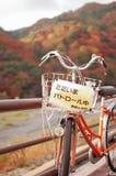 Bicicleta no parol A queda é estação muito colorida de Japão Imagens de Stock Royalty Free