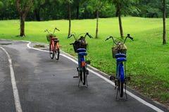 Bicicleta no parque Imagem de Stock