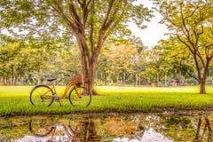 Bicicleta no parque foto de stock