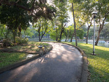 Bicicleta no parque Fotografia de Stock Royalty Free