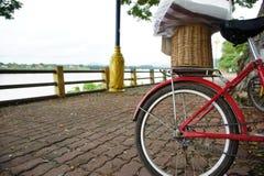 Bicicleta no parque Fotos de Stock Royalty Free