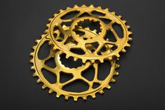 Bicicleta oval dourada que chainring Imagem de Stock