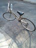 Bicicleta para a vida Imagens de Stock Royalty Free