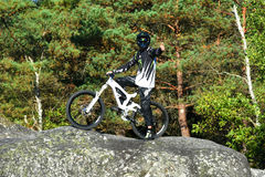 Bicicleta praticando do moutain do homem novo na floresta Imagem de Stock Royalty Free