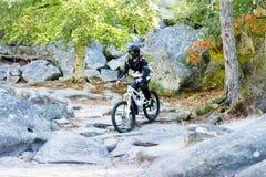 Bicicleta praticando do moutain do homem novo na floresta Foto de Stock Royalty Free
