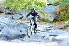 Bicicleta praticando do moutain do homem novo na floresta Imagens de Stock
