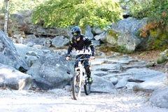 Bicicleta praticando do moutain do homem novo na floresta Fotos de Stock