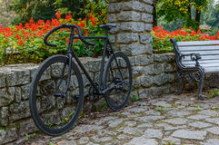 Bicicleta preta Foto de Stock