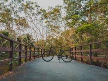 22 - Bicicleta que completa un ciclo en el puente grande a través del pantano fotografía de archivo