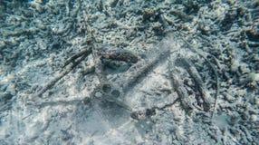 Bicicleta quebrada subacuática Imágenes de archivo libres de regalías
