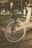 Bicicleta retro com folha de prova do vintage Fotografia de Stock Royalty Free