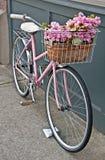 Bicicleta rosada de la vendimia con las flores rosadas Fotos de archivo libres de regalías