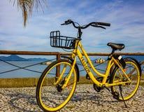 bicicleta submarina ou amarela amarela? fotos de stock royalty free