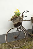 Bicicleta velha com uma cesta da flor fotos de stock royalty free