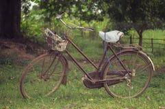 Bicicleta vieja (proceso del estilo del vintage) Imágenes de archivo libres de regalías