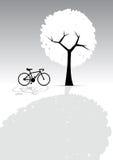 Bicicleta y árbol, luz y sombra, Greyscale Foto de archivo libre de regalías