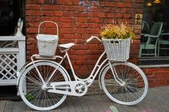 Bicicleta y cama viejas, femeninas foto de archivo libre de regalías