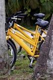 Bicicletas Imagen de archivo