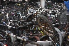 Bicicletas Imagem de Stock