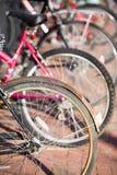 Bicicletas Fotografia de Stock