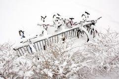 Bicicletas após a tempestade de neve. imagem de stock