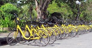 Bicicletas de alquiler Imágenes de archivo libres de regalías